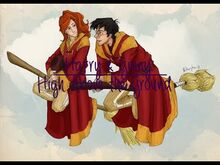 Harry and Ginny -- High Above the Ground