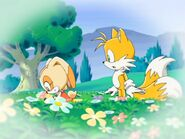 SonicX Cream&Tails flowers
