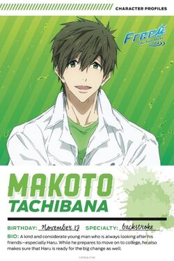 Free! Take Your Marks Movie Bios - Makoto.jpg