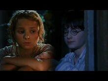 Harry-Luna- Amber