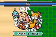 SonicAdvance3 Cream&Tails