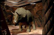 TriceratopsModel