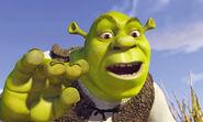 Shrek onions