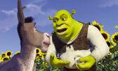 Shrek donkey onions