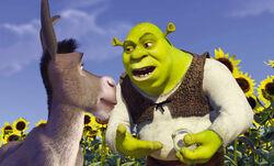 Shrek donkey onions.jpg