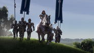 Duloc guards farquaad banners