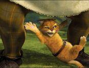Puss going to get shrek