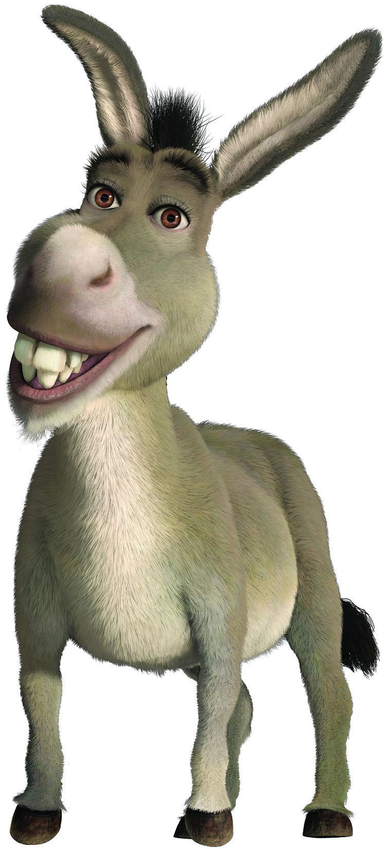 Asno Burro Shrek Wiki Fandom