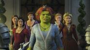 Fiona princesses captured