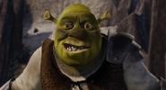 Shrek prince charming helmet