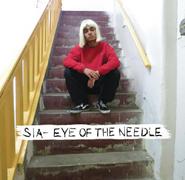 Eye of the Needle cover