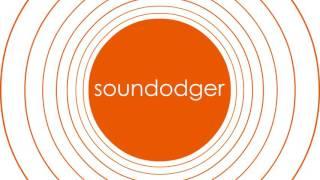 I Do What I Want - Soundodger