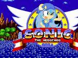 Act Clear - Yuuto Ichika in Sonic The Hedgehog