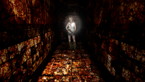 HeatherCorridor