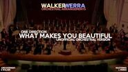 What Makes You Beautiful - Orchestra Version (One Direction)