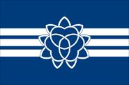 Jiesan flag