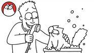 BATHTIME - Missing Cat Pt