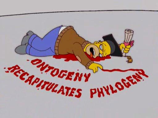 Intellectual Homer