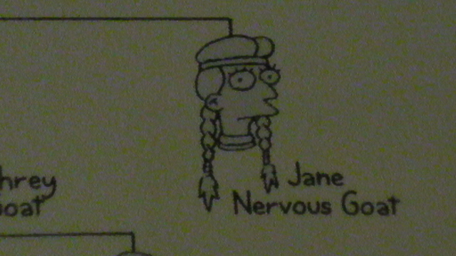 Jane Nervous Goat