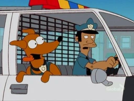 Pare, Senão o Meu Cachorro Atira!
