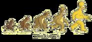 Evoluzione dell'Homer Sapiens