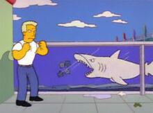 Tom 11 04x14 tubarão