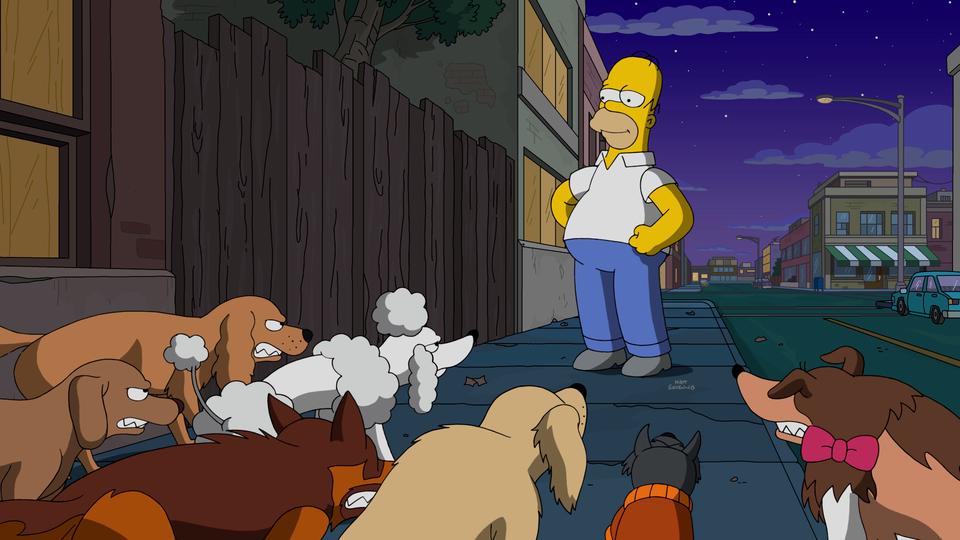 A Cidade dos Cães