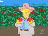 Homer, o fazendeiro