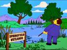 Springfield Wetlands