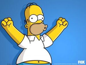 Homer FOX.jpg