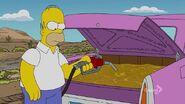Lisa Simpson, This Isn't Your Life 19