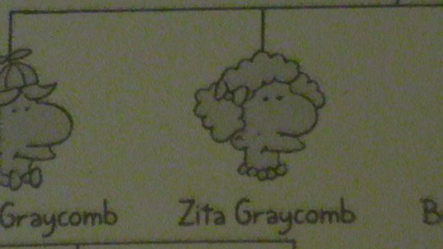 Zita Graycomb