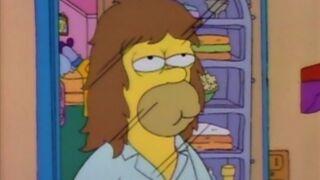 Homer z włosami