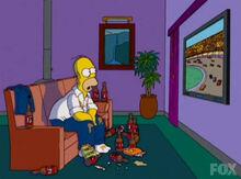 Homer tv plasma nascar