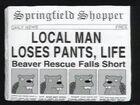 The Springfield shopper 3