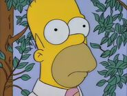 The last temptaation of Homer -2015-01-02-11h52m51s54