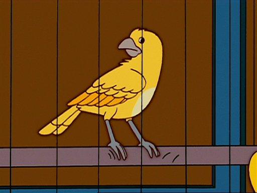 Canary M. Burns