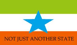 North Takoma flag.png