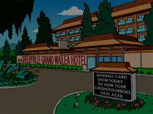 Hotel wailea shelbyville 18x18