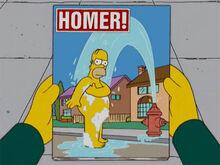 Homer revista banho 18x16