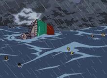 Pelicano podre naufrágio