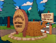 Springfield National Forest