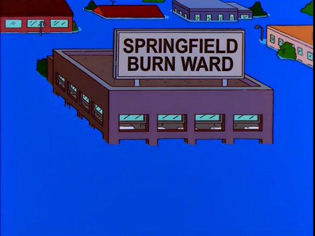 Springfield Burn Ward