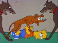 Dog of Death 117