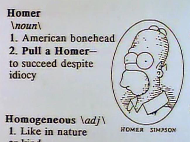 Definindo Homer