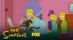 Look What The Cat Dragged In Season 28 Ep. 21 THE SIMPSONS