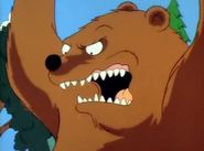 Bear (7G09)
