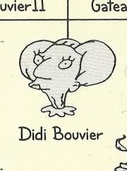 Didi Bouvier