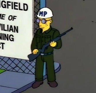 Fort Springfield Guard