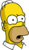 Homer Confused Icon.png